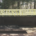 """""""Layers of Nature- Beyond the Line"""" now on view at the Sezon Musuem of Modern Art, April 21- September 2, 2018"""